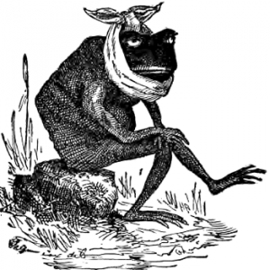 frog with toothache